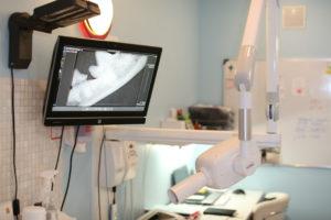 stomatoloģija