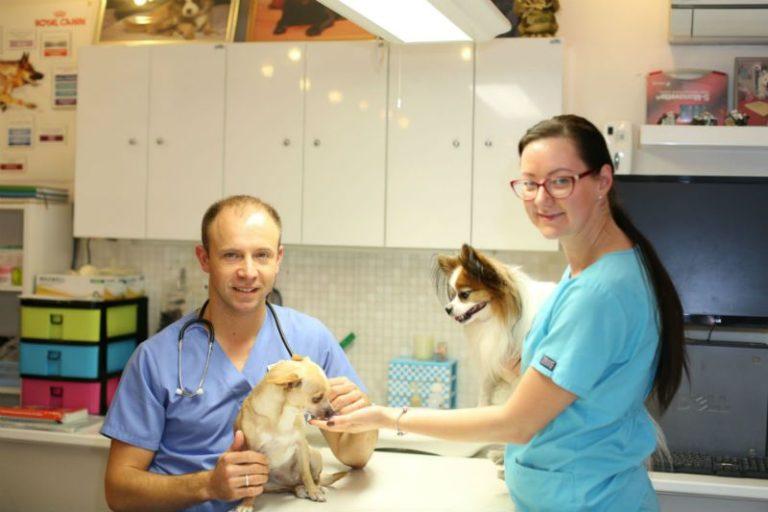 veterinārā klīnika