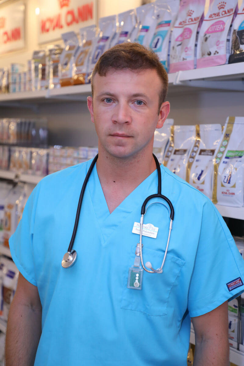 veterinara klinika